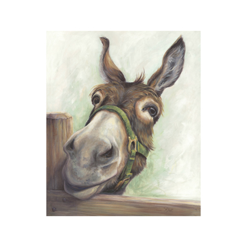 Picture of Hee Haw Donkey - Canvas