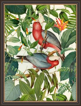 Picture of Tropical Jungle Birds SE - MP60
